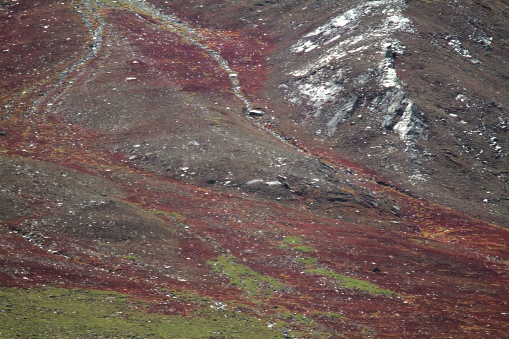 The colour of mountains : Details